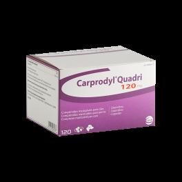 CARPRODYL QUADRI 120 mg...