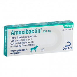 AMOXIBACTIN 250 mg 10...