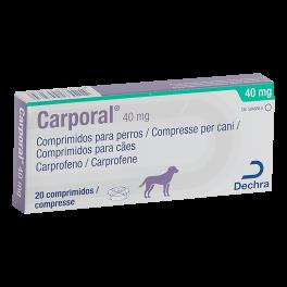CARPORAL 40 mg 20 comp
