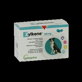 ZYLKENE 225 mg 100 comprimidos