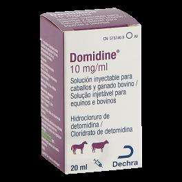 DOMIDINE 10 mg/ml 20 ml
